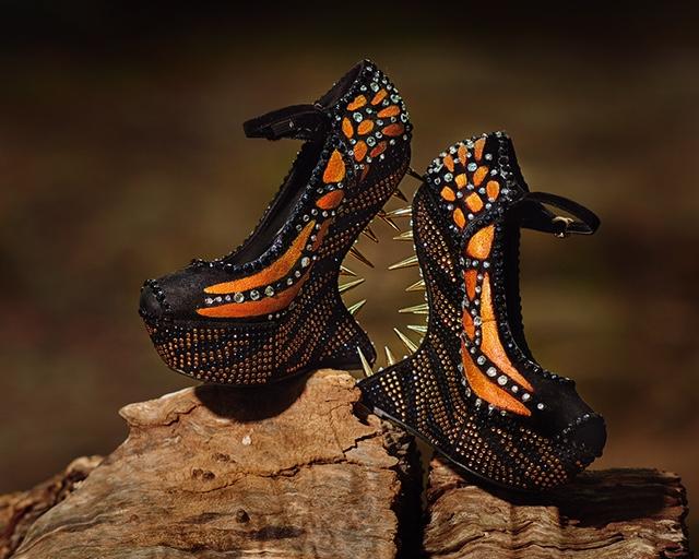 web-monarch-shoes_8102401