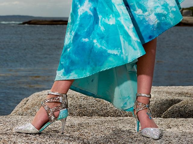 web-shoes_8102204